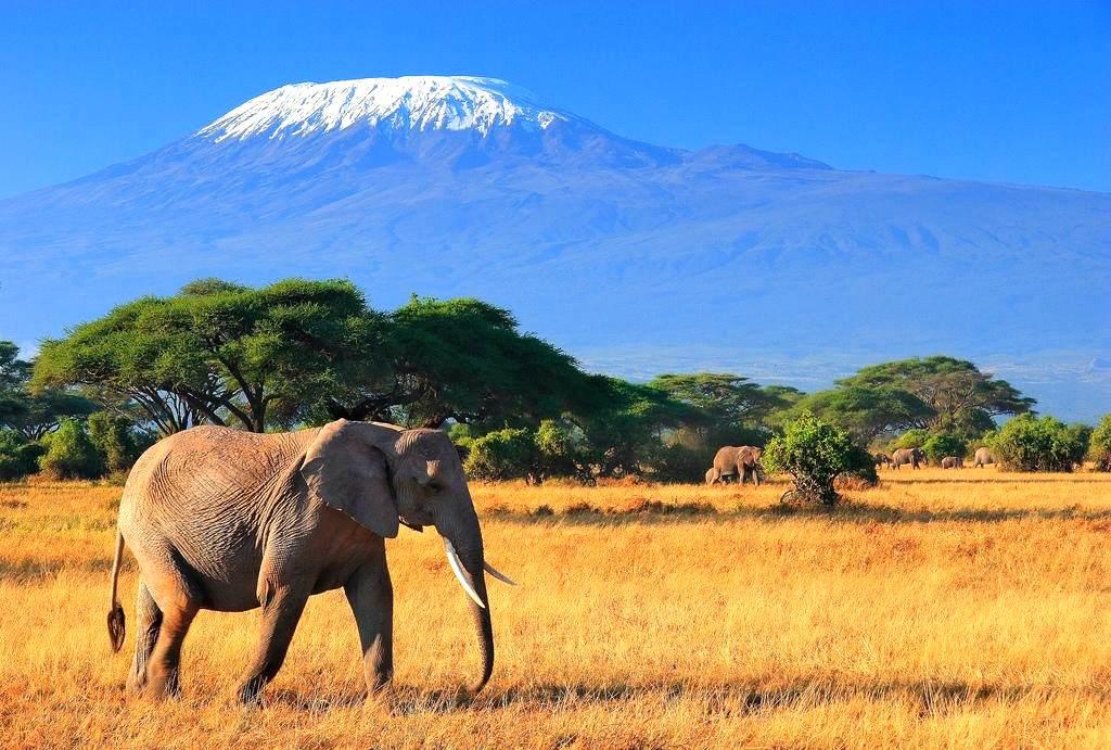 Туры в Танзанию на Занзибар