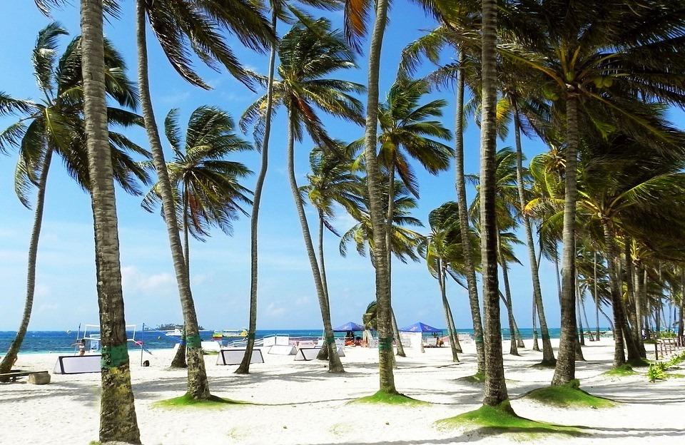 Тропический пляж с белым песком