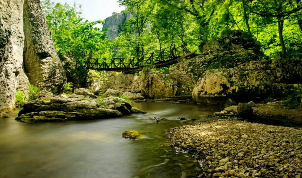 Отдых по раннему бронированию в Болгарию