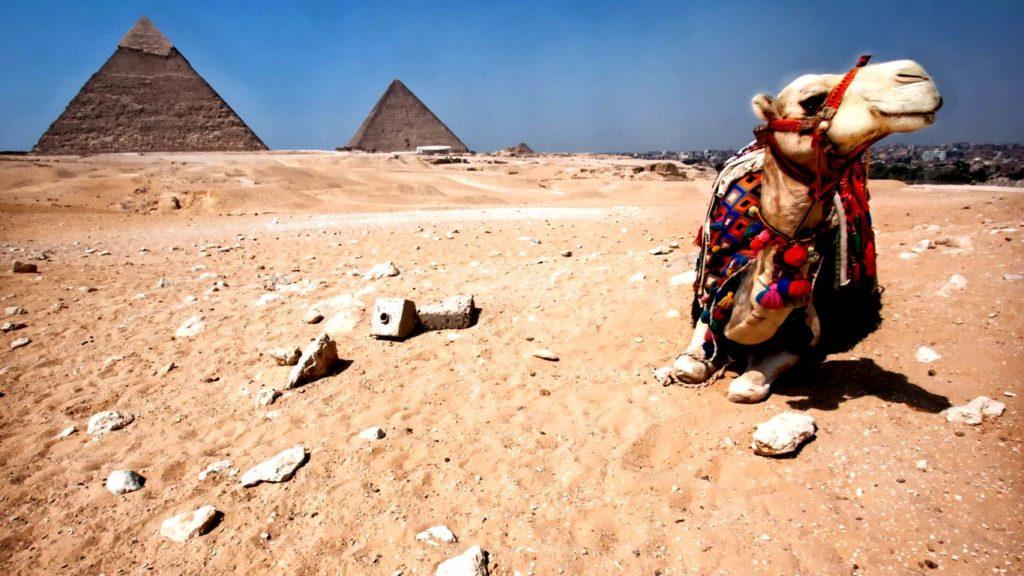 Отдых в Египте на Новый Год зимой в декабре